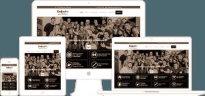responsive-wordpress-website-design